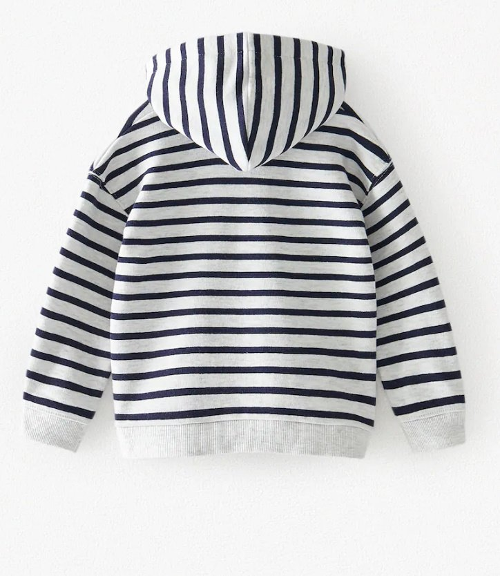 Zara Sweatshirt With Hood (Strips)